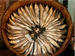 barrel of sardines